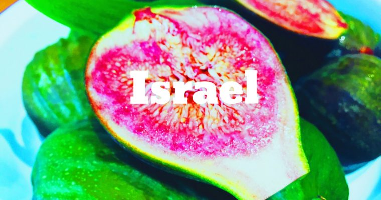 Fig tree to fork Israeli Spicy Fig Chutney | What is the national dish of Israel?